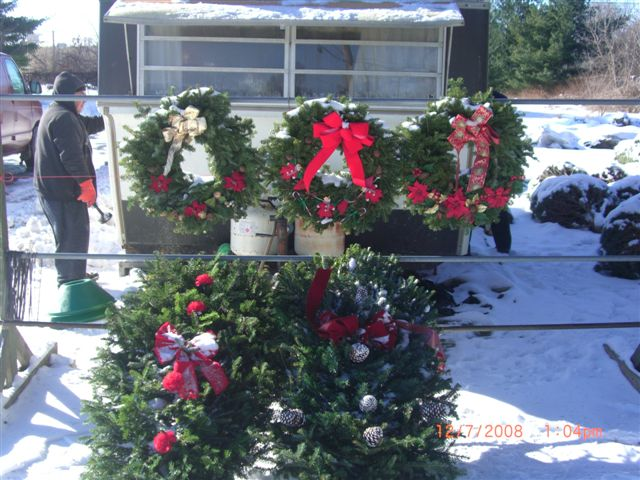 nicks tree lot real christmas trees in michigan grave blankets wreaths garland clarkston michiganchristmas trees waterford michiganchristmas trees